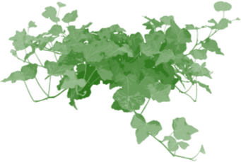 Greenアイコン